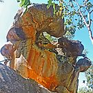 Sculpture by Nature by Graeme  Hyde