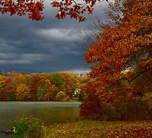 Putnam Lake, Patterson, New York by Nancy Rohrig