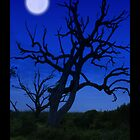 MOON TREE iPhone by Kevin McLeod