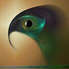 The bird of prey by Christina Brundage