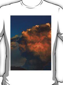 ©HCS Cidonia I T-Shirt