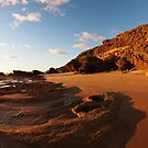 Wild Coast by Dave Callaway