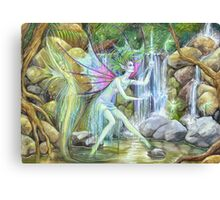 'Waterfall Feys' by Jo Morgan Canvas Print