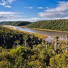 Bushmans River by Warren. A. Williams