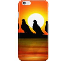 Sunset Point 2 new iPhone Case/Skin