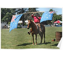 Horses and Flags Poster