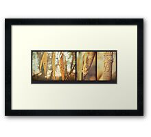 Willow Triptych Framed Print
