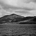Cape Terawhiti 1 by Duncan Cunningham