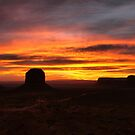 The American Southwest by Robyn Lakeman