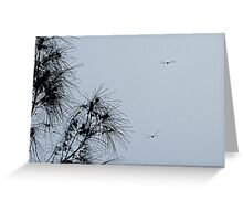 Dragonflies flying Greeting Card