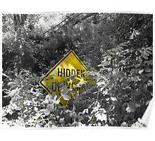 Hidden Irony Poster