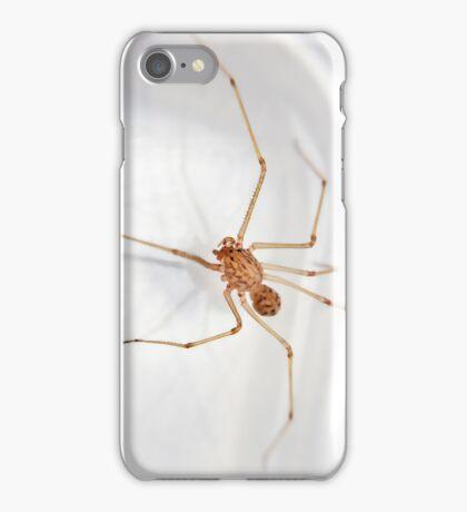 Itsy Bitsy Teeny Weeny Stripey Spitting Spider iPhone Case/Skin