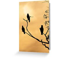 Corellas on golden sky Greeting Card