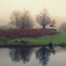 misty trees by Daphne Kotsiani