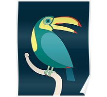 TOUCAN WITH RED NAILS Poster