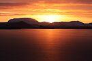 Lake Myvatn, North Iceland. by Dean Bailey