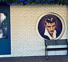 Elvis at Graceland by FireDzine