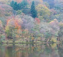 Reflections, Grasmere. by Nick Atkin