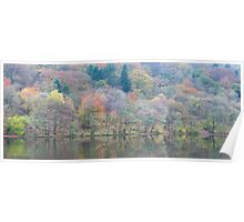 Reflections, Grasmere. Poster