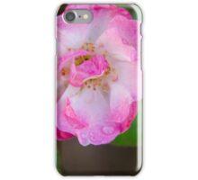 Single Rose 2 iPhone Case/Skin