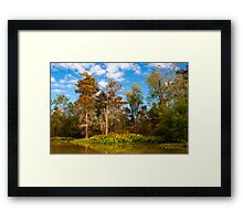 Bayou Teche Framed Print