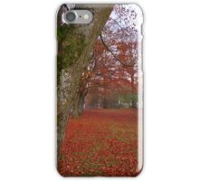 Red carpet of leaves iPhone Case/Skin