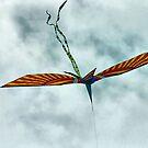 It's a Bird, It's a Plane, It's a Kite! by Monnie Ryan