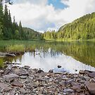 Forrest and lake. by Skipnes