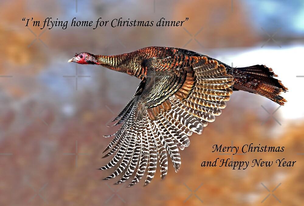 Christmas Turkey by Jim Cumming