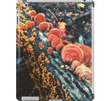 Orange Turkeytails iPad Case/Skin