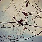 Autumn 2 in Dusk by ©Dawne M. Dunton