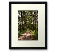 Foot Path Framed Print