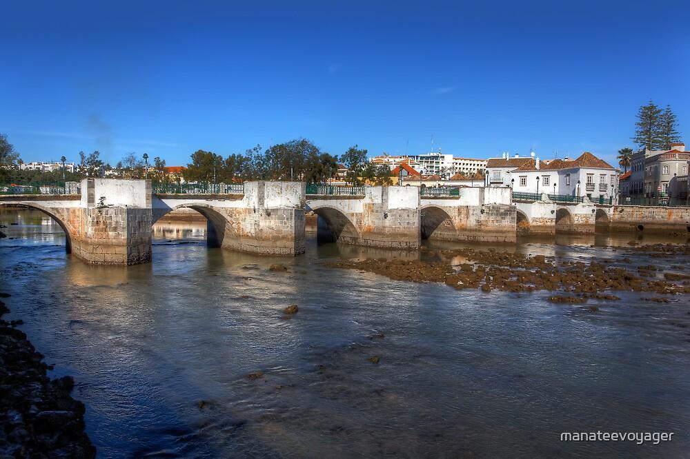 The Roman Bridge by manateevoyager