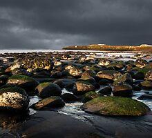 hairy stones by JorunnSjofn Gudlaugsdottir