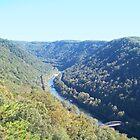 Appalachian Mountain Landscape Overlook  by dww25921