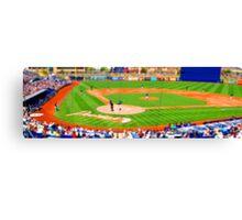 tiny baseball game Canvas Print