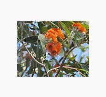 Eucalyptus Miniata, Woollybutt, Kimberley, Western Australia Unisex T-Shirt