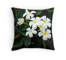 Broome Frangipanis Throw Pillow