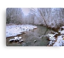 Little Muncy Creek Snowstorm Canvas Print