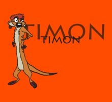 Timon [with name] by MrRaccoon