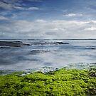 Sea Green by Caroline Gorka
