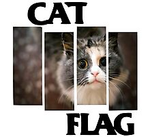 Cat Flag Photographic Print