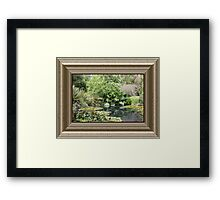 Walk into Quiet Reflection.. Framed Print