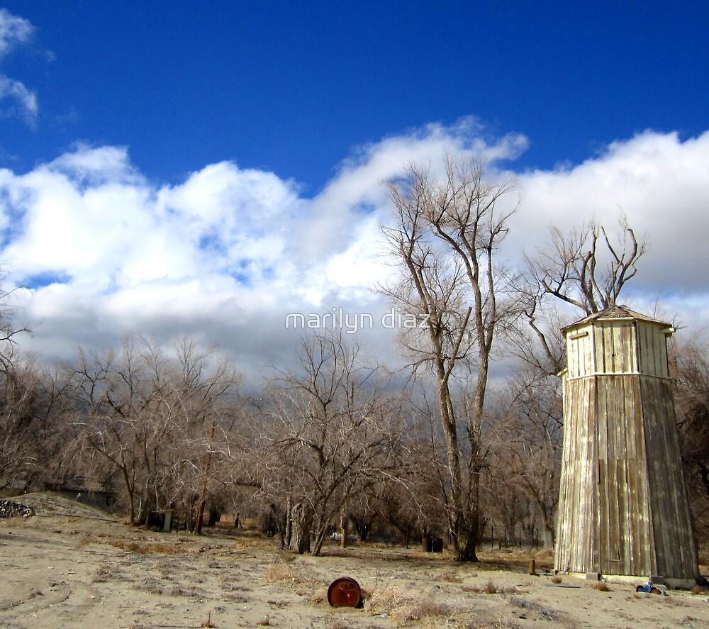 Rusty Barrel And Wood Silo by marilyn diaz
