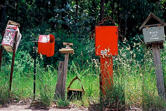 BUSH LETTER BOXES by Ronald Rockman