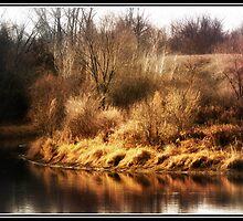 The Edge of Autumn by KBritt