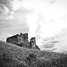 Castle of Rakvere by Maris Stanley