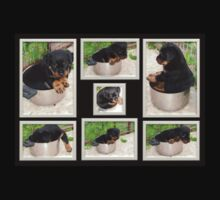 Collage Of Puppy Rottweiler Sitting In Food Bowl Kids Tee
