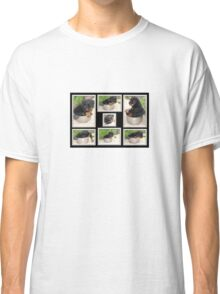 Collage Of Puppy Rottweiler Sitting In Food Bowl Classic T-Shirt