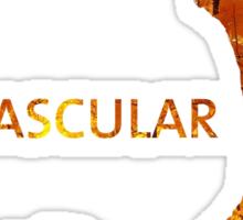 Mascular Autumn 2012 Sticker